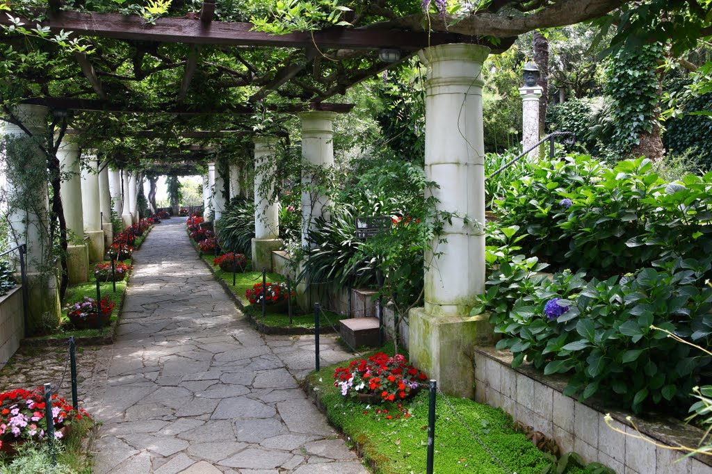 Giardino Villa San Michele