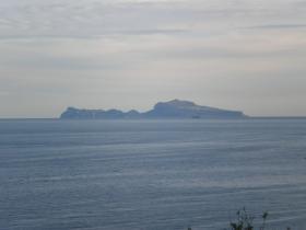Capri sirena